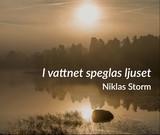 Niklas Storm - I vattnet speglas ljuset