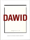 Dawid - This Is a Photograph